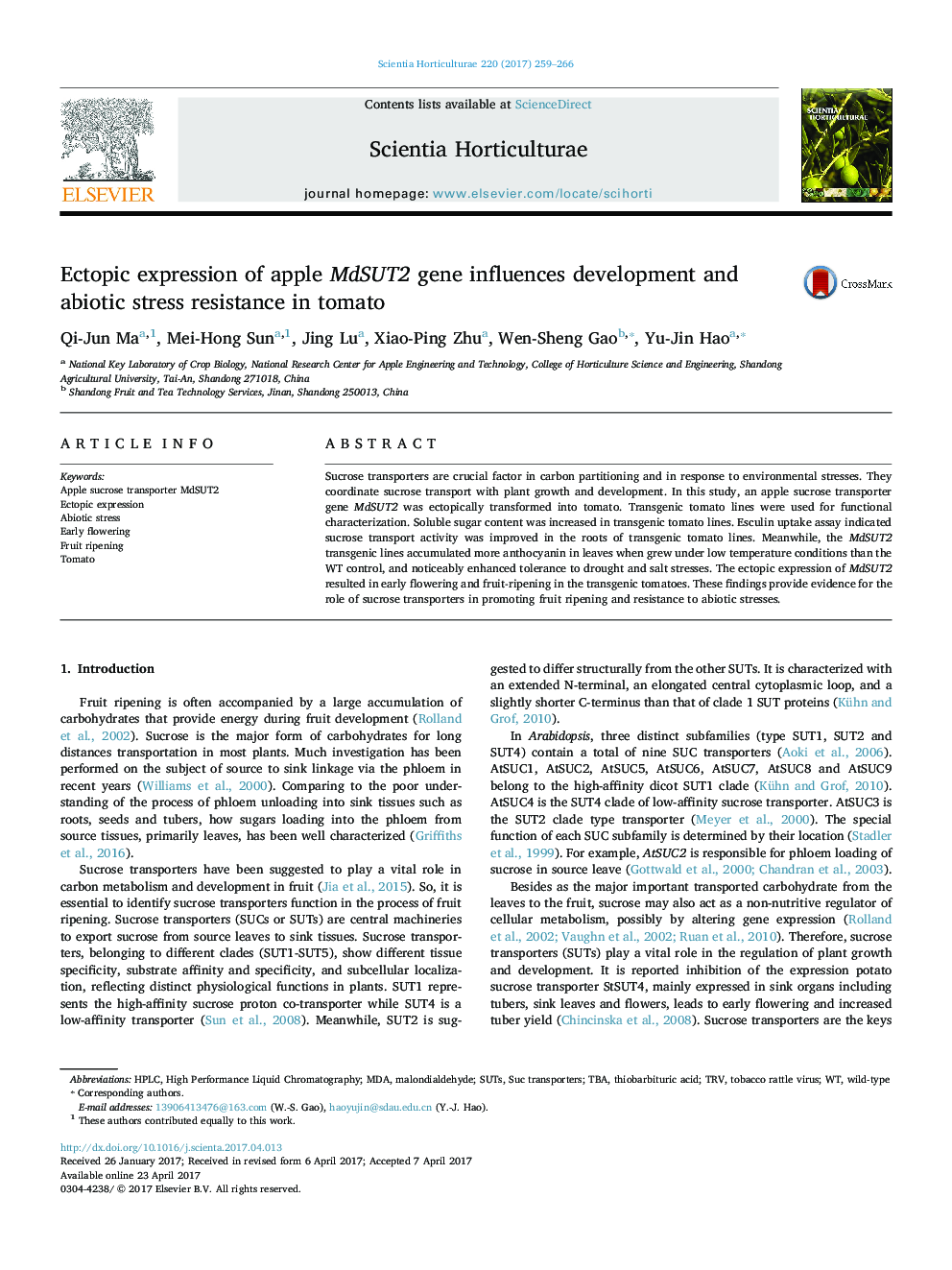 Ectopic expression of apple MdSUT2 gene influences development and abiotic stress resistance in tomato